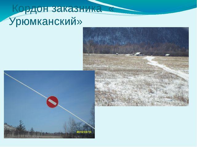 Кордон заказника « Урюмканский»