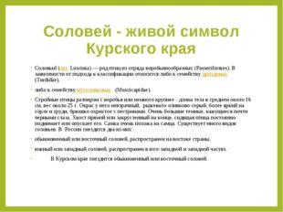 Соловей - живой символ Курского края Соловьи́(лат.Luscinia) — род птиц из о