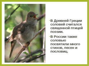 В Древней Греции соловей считался священной птицей поэзии. В России также сол