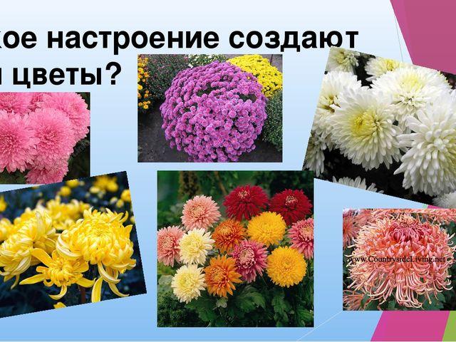Какое настроение создают эти цветы?