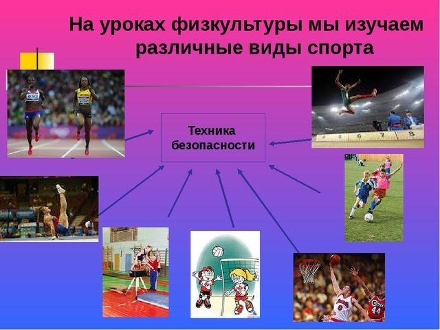 На уроках физкультуры мы изучаем различные виды спорта Техника безопасности