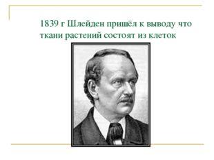 1839 г Шлейден пришёл к выводу что ткани растений состоят из клеток