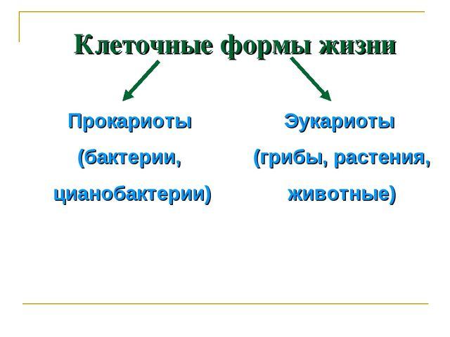 Клеточные формы жизни Прокариоты (бактерии, цианобактерии) Эукариоты (грибы,...