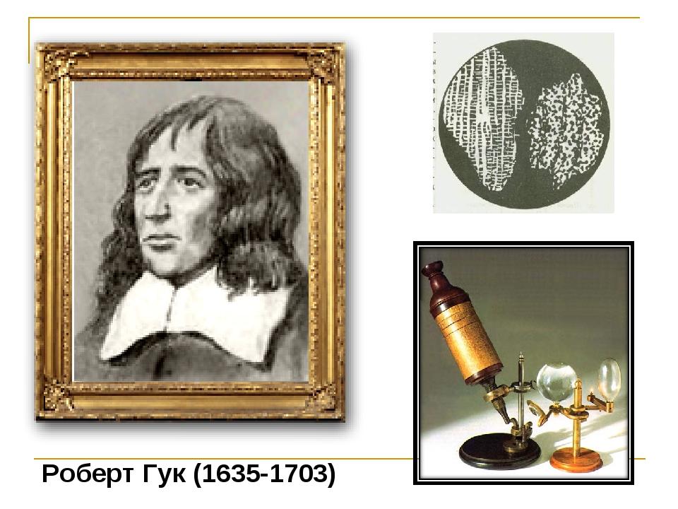 Роберт Гук (1635-1703)