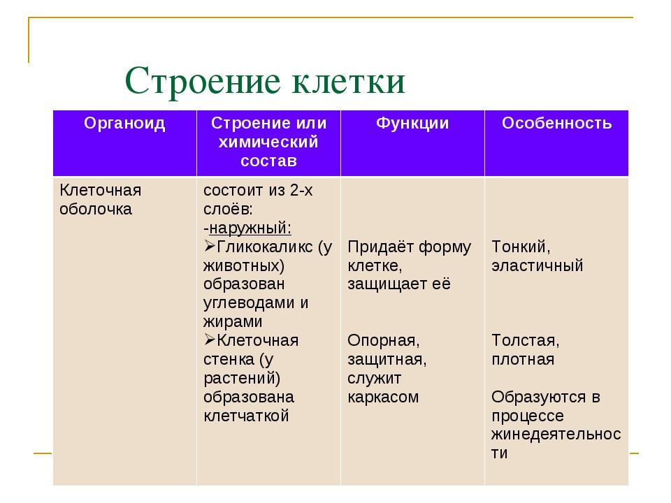 Строение клетки ОрганоидСтроение или химический составФункцииОсобенность К...
