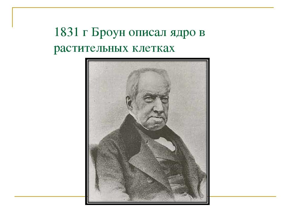 1831 г Броун описал ядро в растительных клетках
