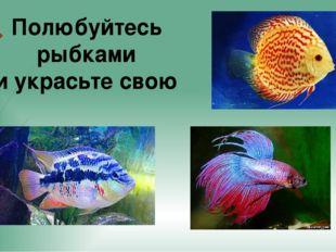 Полюбуйтесь рыбками и украсьте свою