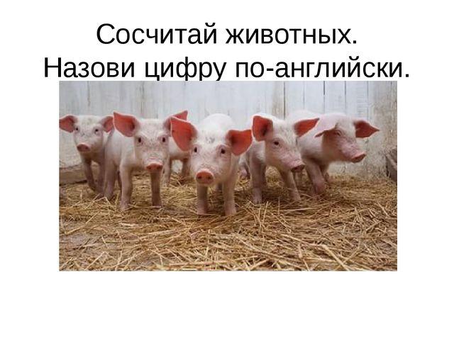 Сосчитай животных. Назови цифру по-английски.