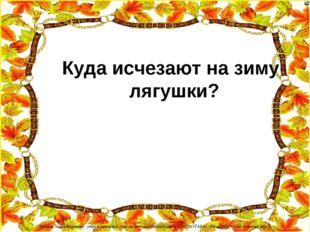 Куда исчезают на зиму лягушки? Лазарева Лидия Андреевна, учитель начальных кл