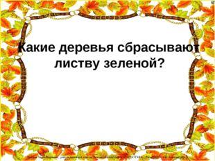 Какие деревья сбрасывают листву зеленой? Лазарева Лидия Андреевна, учитель н