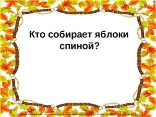 Кто собирает яблоки спиной? Лазарева Лидия Андреевна, учитель начальных клас