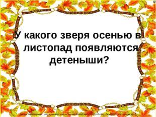 У какого зверя осенью в листопад появляются детеныши? Лазарева Лидия Андреевн