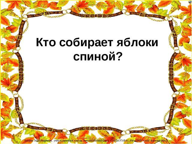 Кто собирает яблоки спиной? Лазарева Лидия Андреевна, учитель начальных клас...
