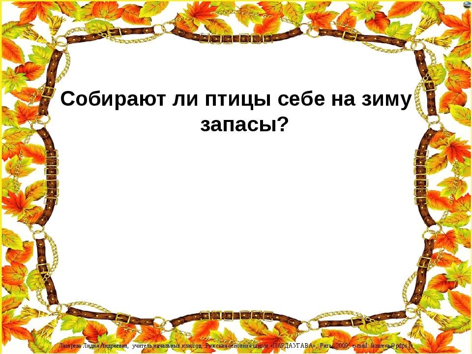 Собирают ли птицы себе на зиму запасы? Лазарева Лидия Андреевна, учитель нача...