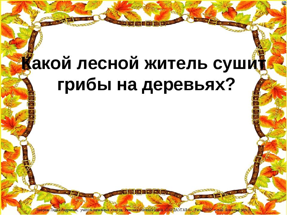 Какой лесной житель сушит грибы на деревьях? Лазарева Лидия Андреевна, учител...