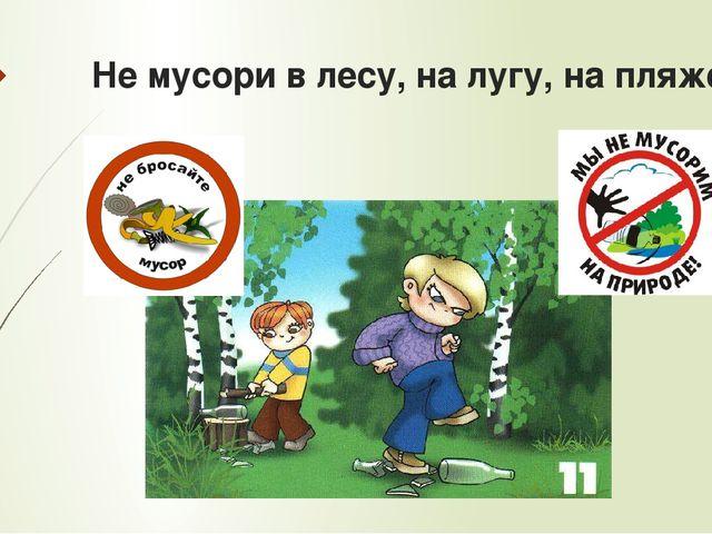 Не мусори в лесу, на лугу, на пляже