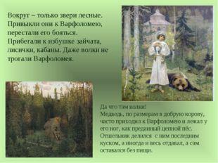 Вокруг – только звери лесные. Привыкли они к Варфоломею, перестали его боятьс
