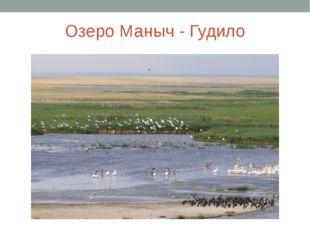 Озеро Маныч - Гудило