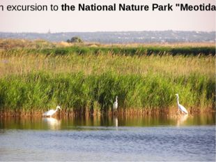 "an excursion to the National Nature Park ""Meotida"""