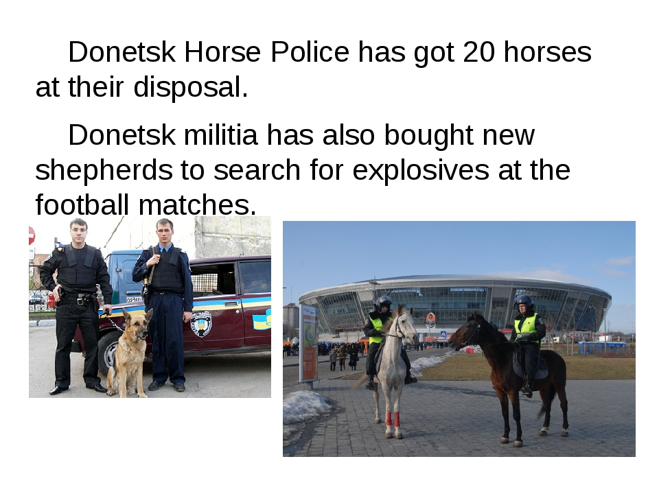 Donetsk Horse Police has got 20 horses at their disposal. 	Donetsk militia h...