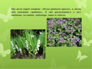 Про весну народ говорит: «Весна цветами красна», а месяц май называет «цветен