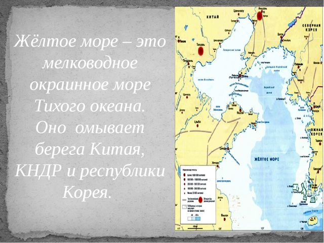 Жёлтое море – это мелководное окраинное море Тихого океана. Оно омывает берег...