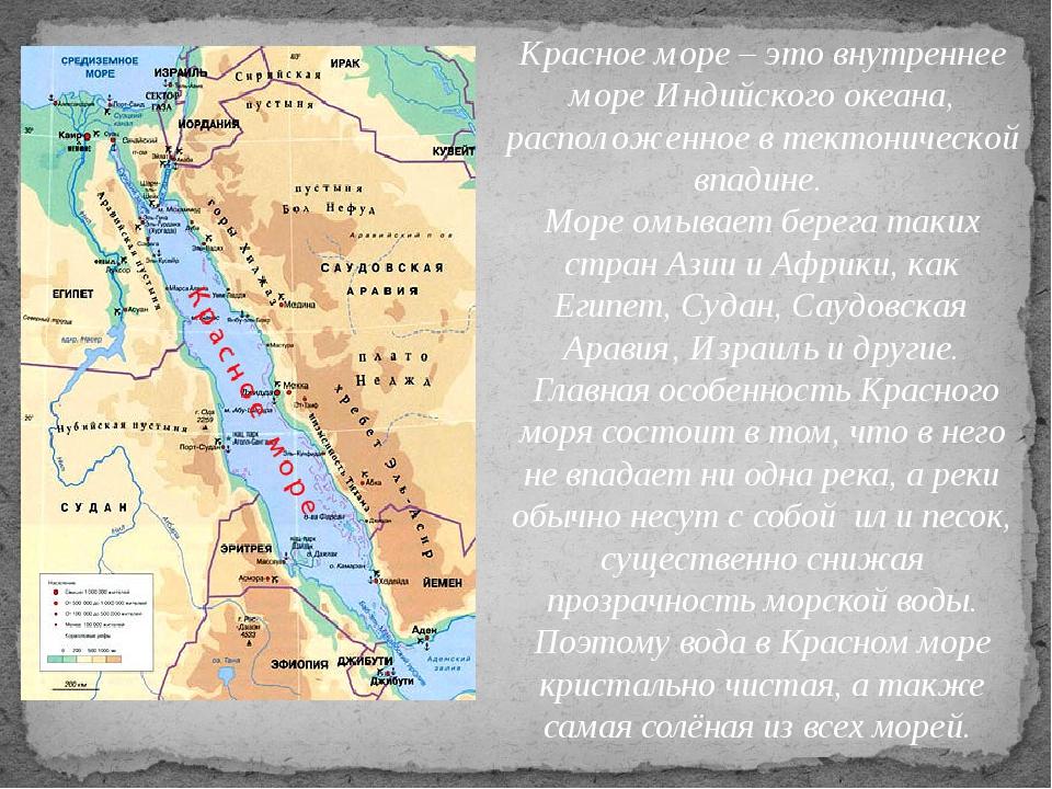 Красное море – это внутреннее море Индийского океана, расположенное в тектони...