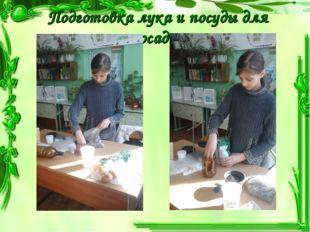 Подготовка лука и посуды для посадки