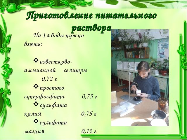 Приготовление питательного раствора На 1л воды нужно взять: известково-аммиа...