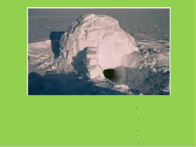На севере снег, На севере лед. Здесь эскимос В иглу живет