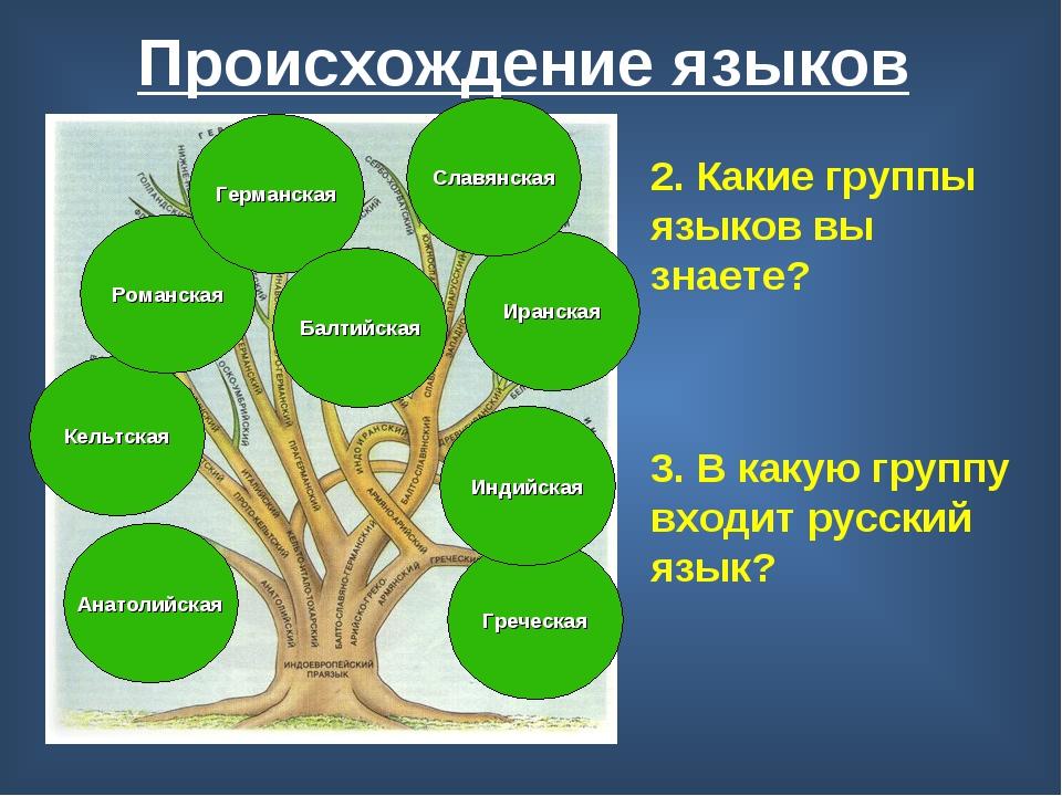 Происхождение языков 2. Какие группы языков вы знаете? Анатолийская Кельтская...