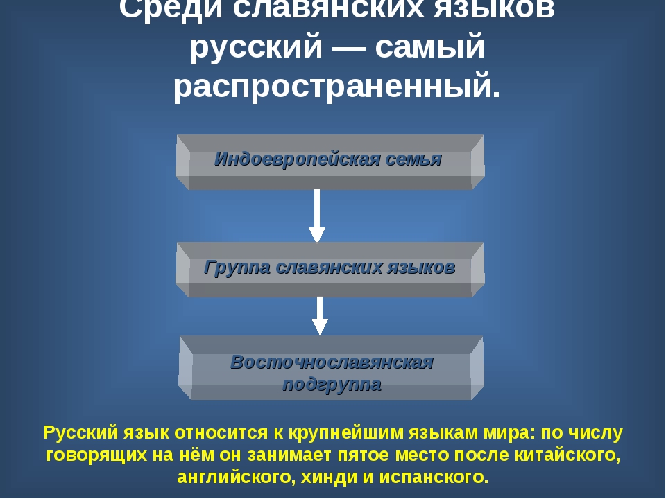 Среди славянских языков русский— самый распространенный. Русский язык относи...