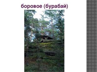 боровое (бурабай)