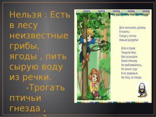 Нельзя : Есть в лесу неизвестные грибы, ягоды , пить сырую воду из речки. -Тр