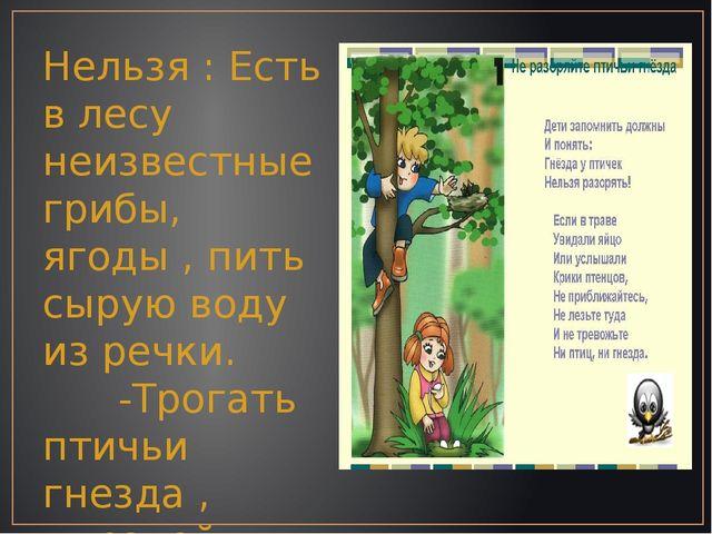 Нельзя : Есть в лесу неизвестные грибы, ягоды , пить сырую воду из речки. -Тр...