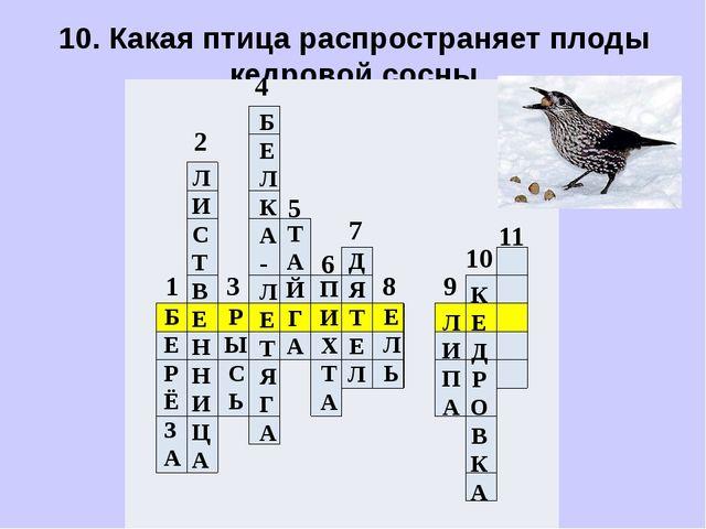 10. Какая птица распространяет плоды кедровой сосны.            ...