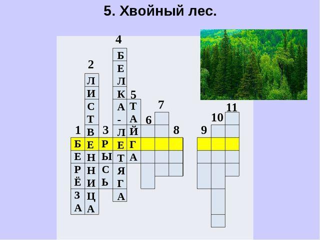 5. Хвойный лес.                               ...