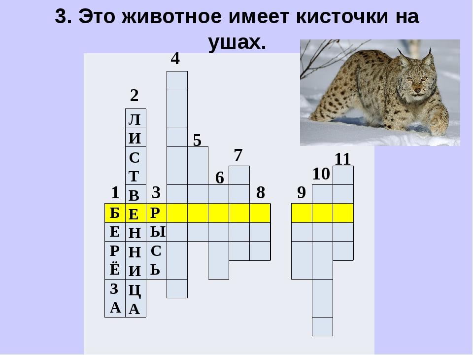 3. Это животное имеет кисточки на ушах.                   ...