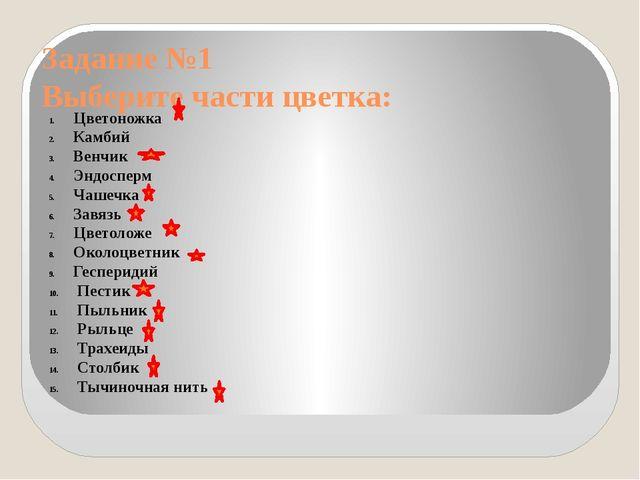 Задание №1 Выберите части цветка: Цветоножка Камбий Венчик Эндосперм Чашечка...