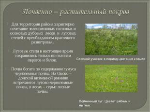 Для территории района характерно сочетание зеленомошных сосновых и осоковых д