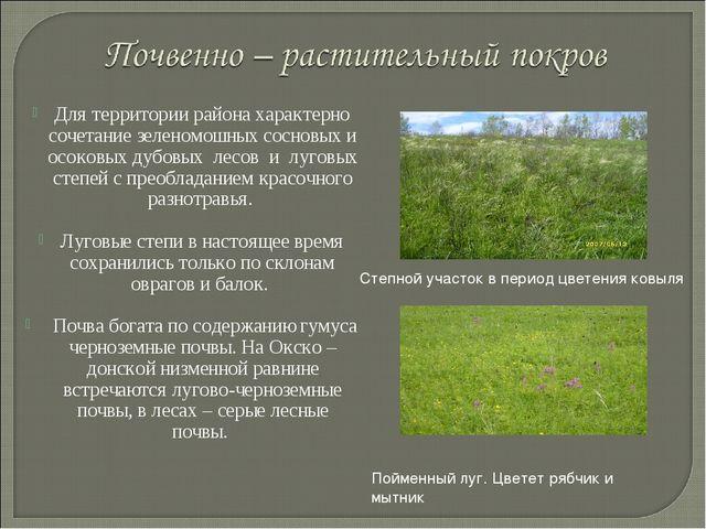 Для территории района характерно сочетание зеленомошных сосновых и осоковых д...