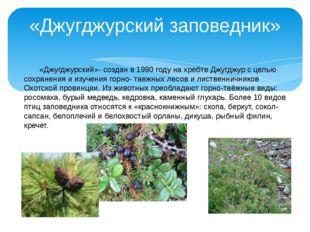 «Джугджурский заповедник» «Джугджурский»- создан в 1990 году на хребте Джугд