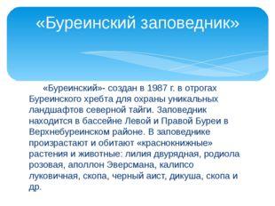 «Буреинский»- создан в 1987 г. в отрогах Буреинского хребта для охраны уника