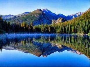 Нет ничего краше и привлекательнее нашего леса! Лес – это величайшее творение