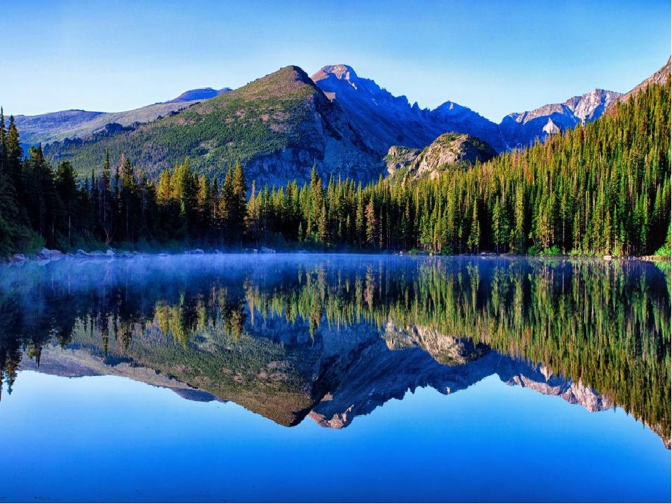 Нет ничего краше и привлекательнее нашего леса! Лес – это величайшее творение...
