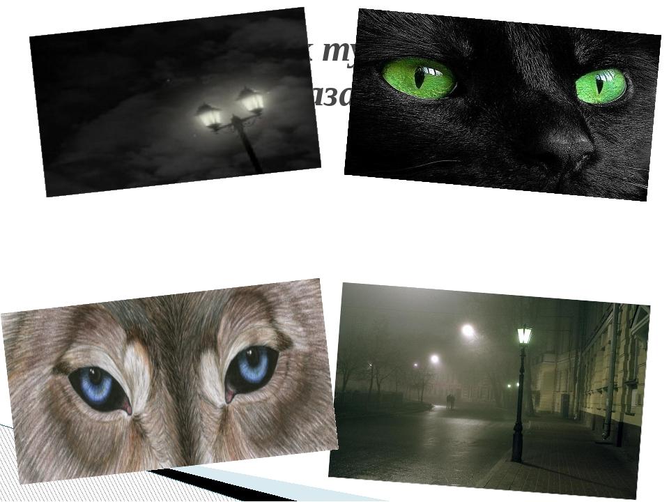 И смотрел, как тускло блестели Фонари глазами зверей.