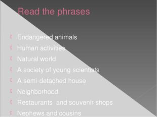 Read the phrases Endangered animals Human activities Natural world A society