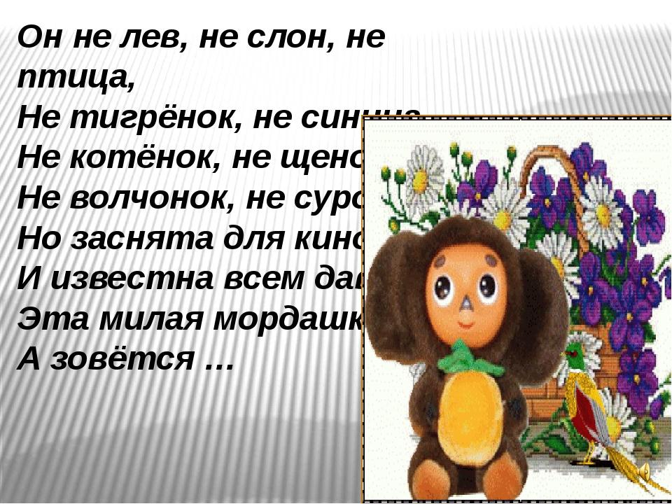 Он не лев, не слон, не птица, Не тигрёнок, не синица, Не котёнок, не щенок, Н...