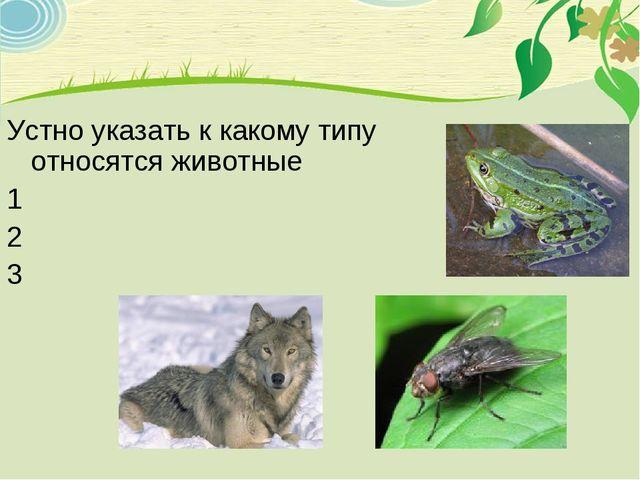 Устно указать к какому типу относятся животные 1 2 3