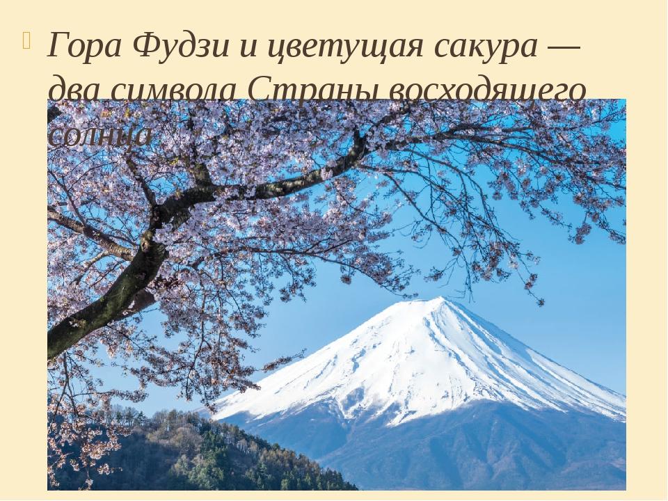 Гора Фудзи и цветущая сакура — два символа Страны восходящего солнца